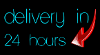 Delivery in 24 hours or money back!